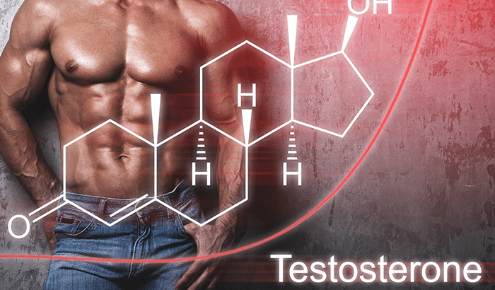Testosterone Information: What It is and How Does It Affect Men?Testosterone Information: What It is and How Does It Affect Men?