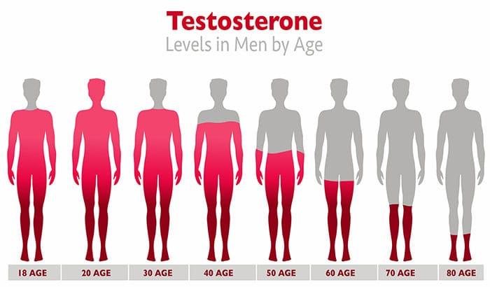 A-Breakdown-of-Testosterone-Levels-by-Age