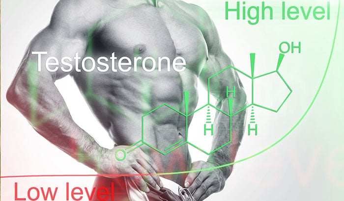 Why It's Hard To Build Muscle With Low Testosterone Levels?